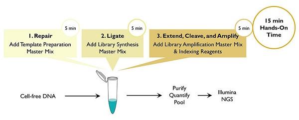 Plasmas-seq-single-tube-workflow-e1458758276145